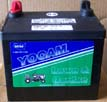 Group U1R Heavy Duty Yocam Lawn Mower Battery